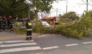 """Drzewo spadło na """"małą Grochowską"""""""