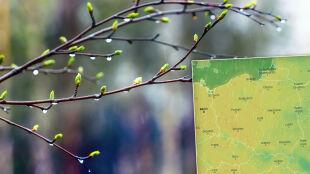 Pogoda na 5 dni: nadciągną deszczowe fronty, ale utoruje się droga dla ciepła