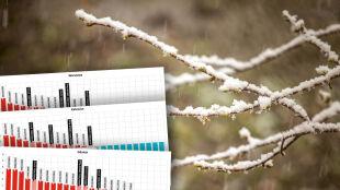 Ubiegła zima w Polsce była najcieplejsza od połowy XIX wieku. Czy tegoroczna pobije rekord?