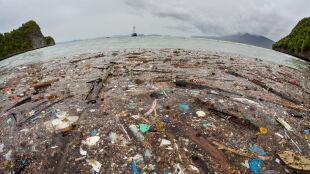 Wielka Pacyficzna Plama Śmieci jest trzy razy większa od Francji