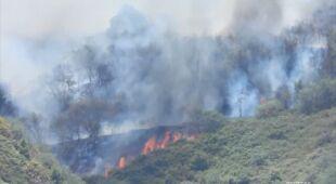 Płomienie szaleją na Gran Canarii